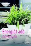 Irmgard Brottrager - Energiát adó szobanövények<!--span style='font-size:10px;'>(G)</span-->
