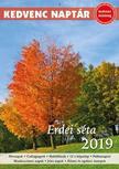 CSOSCH KIADÓ - Kedvenc naptár 2019 - Erdei séta<!--span style='font-size:10px;'>(G)</span-->