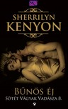 Sherrilyn Kenyon - Bűnös éj [eKönyv: epub, mobi]