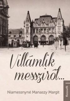 Niamessnyné Manaszy Margit - Villámlik messziről... [eKönyv: epub, mobi]