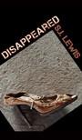 Lewis SJ - Disappeared [eKönyv: epub,  mobi]