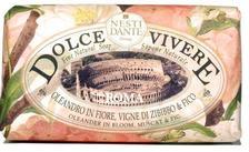1317106 - Nesti Dante natúrszappan - Dolce Vivere Roma