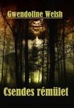 Welsh Gwendoline - Csendes rémület [eKönyv: epub, mobi]<!--span style='font-size:10px;'>(G)</span-->