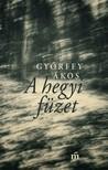 Győrffy Ákos - A hegyi füzet [eKönyv: epub, mobi]<!--span style='font-size:10px;'>(G)</span-->