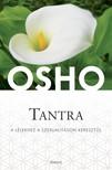OSHO - Tantra - A lélekhez a szexualitáson keresztül [eKönyv: epub, mobi]<!--span style='font-size:10px;'>(G)</span-->