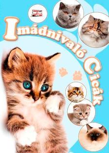 Krajnik Bíró Sára - Imádnivaló cicák