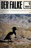 Der Falke 1981-82 (A sólyom) [antikvár]