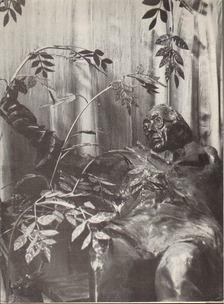 Kratochwill Mimi - Varga Imre Kossuth-díjas szobrászművész kiállítása [antikvár]