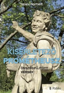 Norbert Tasev - Kísérletező Prométheusz [eKönyv: epub, mobi]