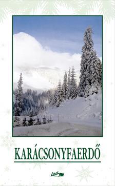 . - Karácsonyfaerdő