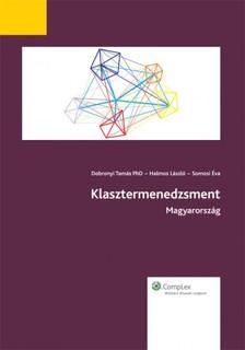 Dobronyi Tamás Halmos László - Somosi Éva - - Klasztermenedzsment Magyarország [eKönyv: epub, mobi]