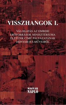 Jámborné Balog Tünde, Bíró Gergely, Zsille Gábor - Visszhangok I. [antikvár]