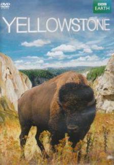 _ - Yellowstone - DVD