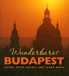 Cooper Eszter Virág (szerk.) - Wundervares Budapest
