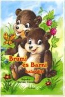 Radvány Zsuzsa - Brumi és Barni kalandjai