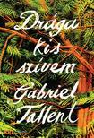 Gabriel Tallent - Drága kis szívem - KULT Könyvek