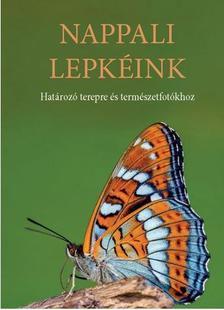 DR. GERGELY PÉTER - NAPPALI LEPKÉINK