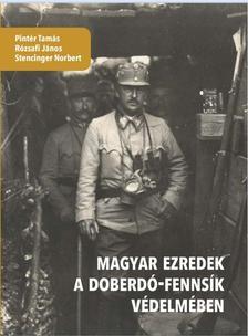Stencinger-Rózsafi-Pintér - Magyar ezredek a Doberdó-fennsík védelmében