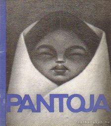 Pantoja, Miguel Alandia - Pantoja [antikvár]