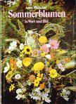 Arno Hielscher - Sommerblumen in Wort und Bild [antikvár]