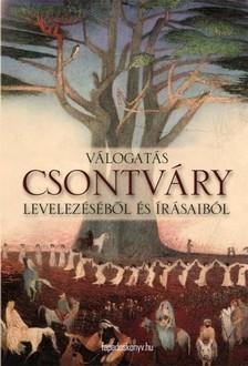 Csontváry Kosztka Tivadar - Válogatás Csontváry levelezéséből és írásaiból [eKönyv: epub, mobi]