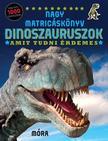 Dinoszauruszok /amit tudni érdemes - nagy matricáskönyv<!--span style='font-size:10px;'>(G)</span-->