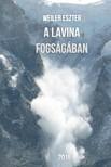 Eszter Weiler - A lavina fogságában [eKönyv: epub,  mobi]