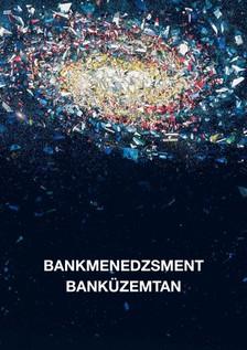 Bankmenedzsment - Banküzemtan [eKönyv: pdf, epub, mobi]