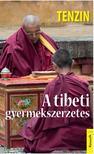 Tenzin - A TIBETI GYERMEKSZERZETES