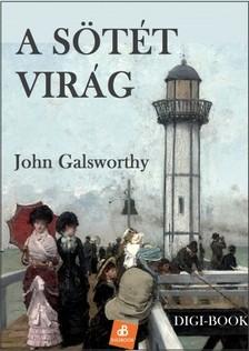 John Galsworthy - A sötét virág [eKönyv: epub, mobi]