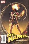 Lopresti, Aaron, Reed, Brian - Ms. Marvel No. 24 [antikvár]