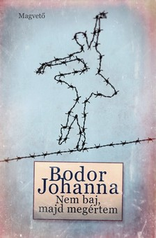 Bodor Johanna - Nem baj, majd megértem [eKönyv: epub, mobi]