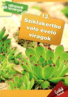 - Sziklakertbe való évelő virágok- Otthonunk növényei 13.