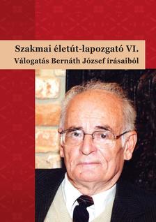 Bárdossy Ildikó, Molnár-Kovács Zsófia (szerk.) - Szakmai életút-lapozgató VI.Válogatás Bernáth József írásaiból
