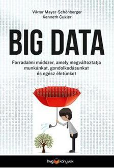 Viktor Mayer-Schönberger - Kenneth Cukier - Big data