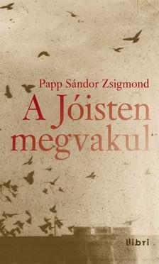 PAPP SÁNDOR ZSIGMOND - A Jóisten megvakul [eKönyv: epub, mobi]