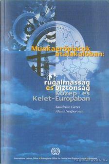 Cazes, Sandrine, Nesporova, Alena - Munkaerőpiacok átalakulóban: rugalmasság és biztonság Közép- és Kelet-Európában [antikvár]
