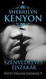 Sherrilyn Kenyon - Szenvedélyes éjszakák - Sötét Vágyak Vadásza 9. [eKönyv: epub,  mobi]