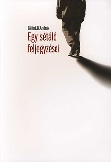 BÁLINT B. ANDRÁS - EGY SÉTÁLÓ FELJEGYZÉSEI