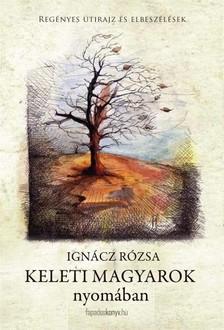 IGNÁCZ RÓZSA - Keleti magyarok nyomában [eKönyv: epub, mobi]