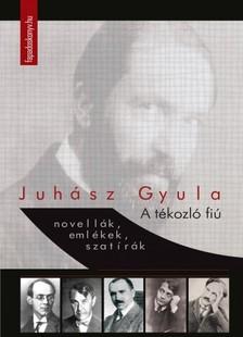 JUHÁSZ GYULA - A tékozló fiú [eKönyv: epub, mobi]