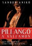 Sándor Anikó - Pillangó a vállamon - Egy nő, akit nem lehet többé megalázni... [eKönyv: epub, mobi]<!--span style='font-size:10px;'>(G)</span-->