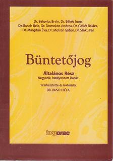 Busch Béla (szerk.) - Büntetőjog Általános Rész [antikvár]