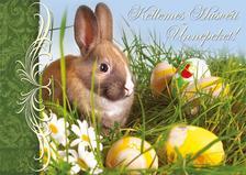 14025 - Húsvéti képeslap LC6, HA288