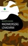 MIKSZÁTH KÁLMÁN - Magyarország lovagvárai [eKönyv: epub, mobi]<!--span style='font-size:10px;'>(G)</span-->