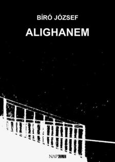 BIRÓ JÓZSEF - Alighanem