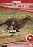 - GEPÁRD - A LEGGYORSABB VADÁSZ - A TERMÉSZET CSODÁI - DVD - DISCOVERY