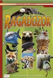 Ragadozók - Képes ismeretterjesztés gyerekeknek<!--span style='font-size:10px;'>(G)</span-->
