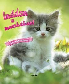 - Imádom a macskákat! - több mint 50 fajta