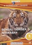 - BENGÁLI TIGRISEK AFRIKÁBAN - A TERMÉSZET CSODÁI - DVD - DISCOVERY [DVD]